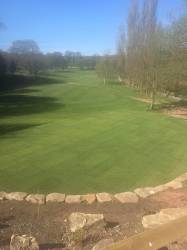 View of the 2nd tee after levelling work and re-turfing